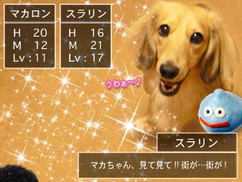 machifukko_01.jpg