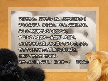 machifukko_04.jpg