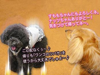 machifukko_06.jpg