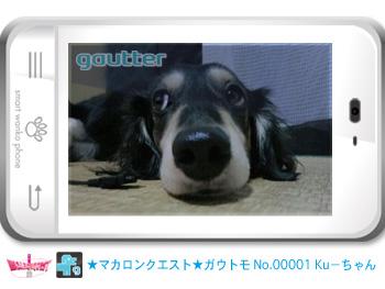 mq_gautomo_00001.jpg