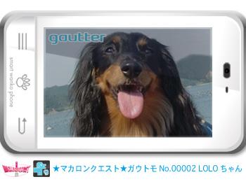mq_gautomo_00002.jpg