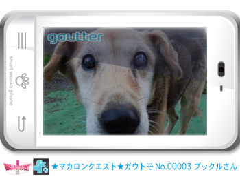 mq_gautomo_00003.jpg