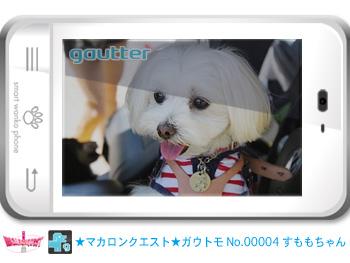 mq_gautomo_00004.jpg