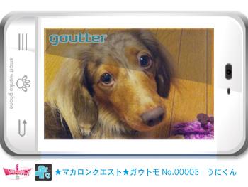 mq_gautomo_00005.jpg
