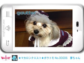 mq_gautomo_00006.jpg
