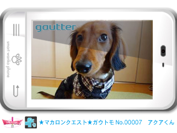 mq_gautomo_00007.jpg