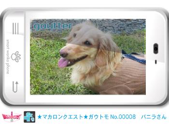 mq_gautomo_00008.jpg