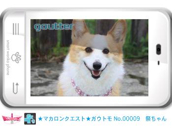 mq_gautomo_00009.jpg