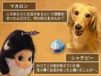 shyachipi_02.jpg