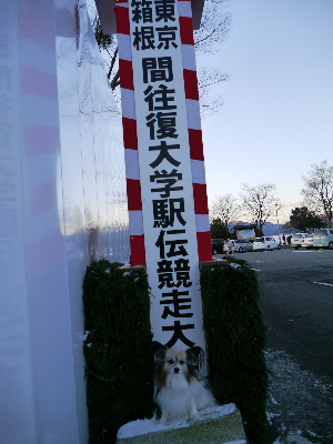2013箱根10