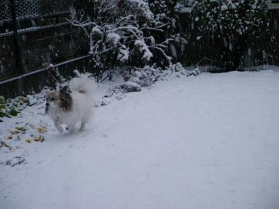 2013初雪3
