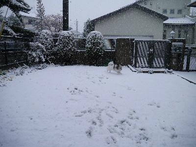 2013初雪5