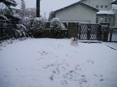 2013初雪6