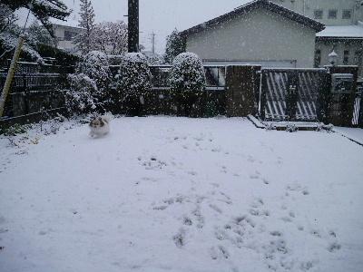 2013初雪7