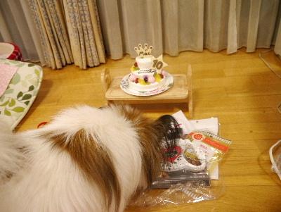 10歳の誕生日8