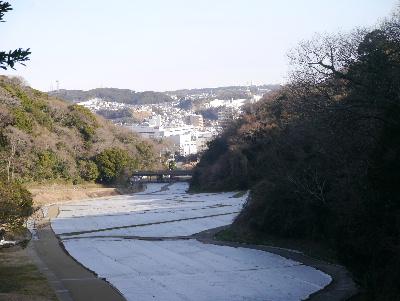 20132横須賀5