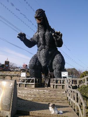 2013横須賀6