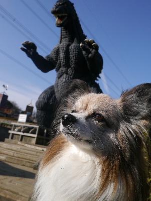 2013横須賀7