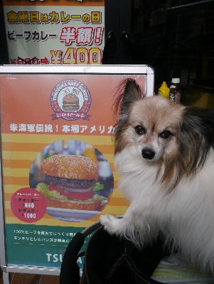 2013横須賀2−3