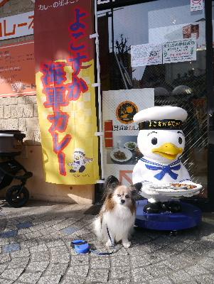 2013横須賀2−7