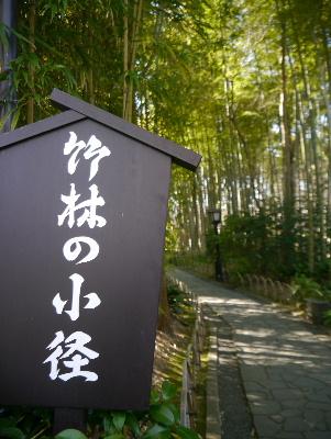 2013伊豆6−14