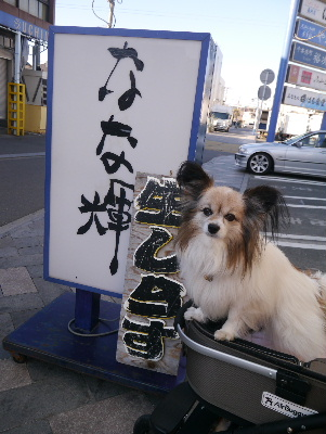 2013伊豆7−3
