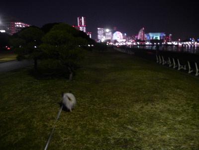 2013横浜4