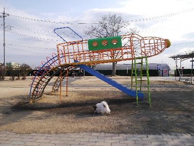 2013佐野11