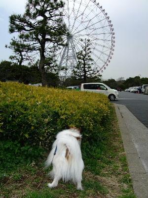 葛西臨海公園1.JPG
