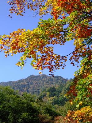 湯ノ湖2.JPG