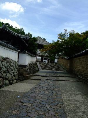 奈良3-8.JPG