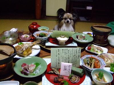 奈良4-11.JPG