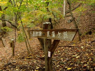 2011日光10.JPG