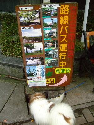 2011軽井沢4.JPG