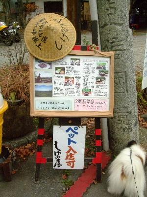 2011軽井沢10.JPG