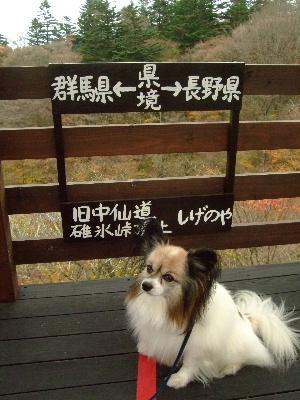 2011軽井沢12.JPG