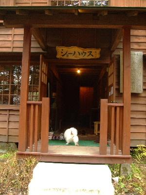 2011軽井沢24.JPG