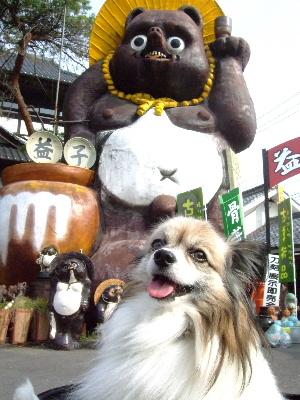 2011益子1.JPG