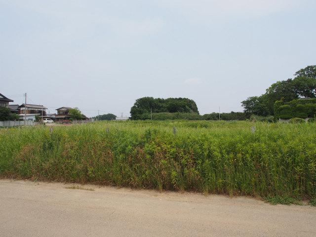 坂東市の内野山周辺を。