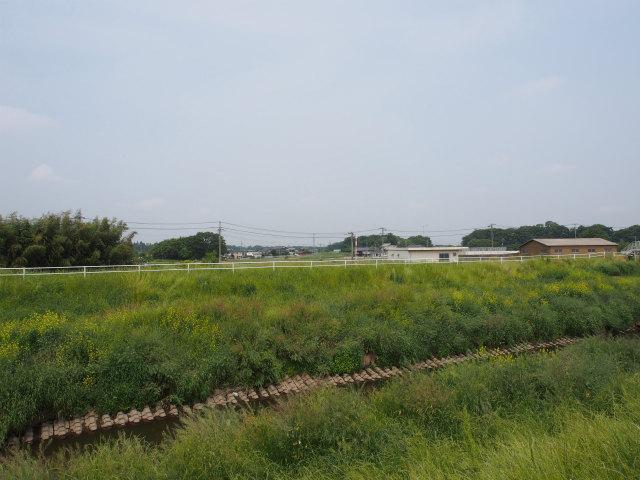 西仁連川を越える部分。