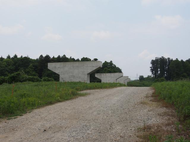 こちらも柳橋付近。サイエンス大通りから100メートル程。