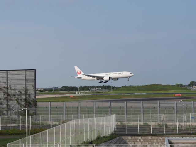撮影の帰りは成田空港に寄って着陸風景を楽しんでます。