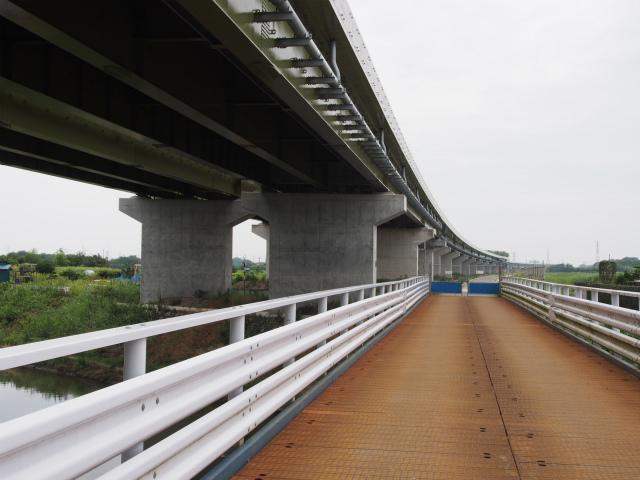背中側。ここに橋を架けて側道整備してくれるとありがたいんだけどな。
