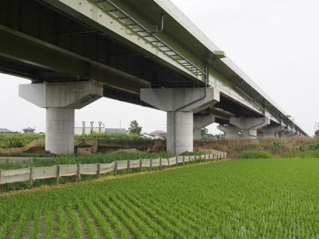 柴山枝郷地区から菖蒲白岡インター方面を。