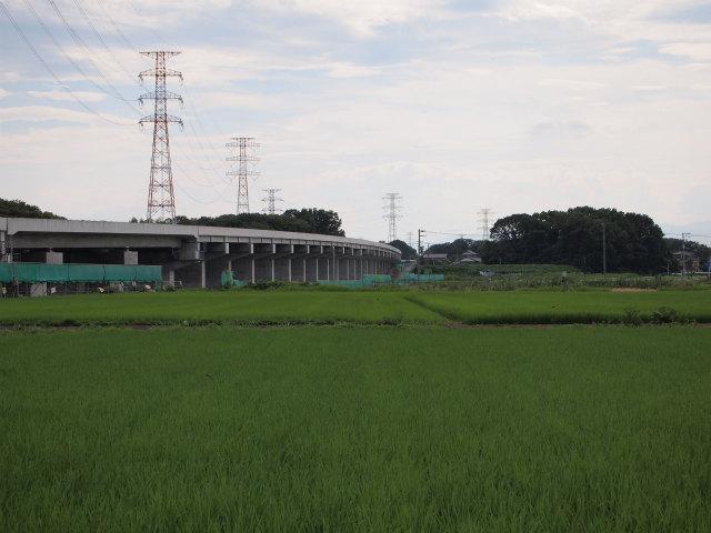 変化のない川田谷高架橋。