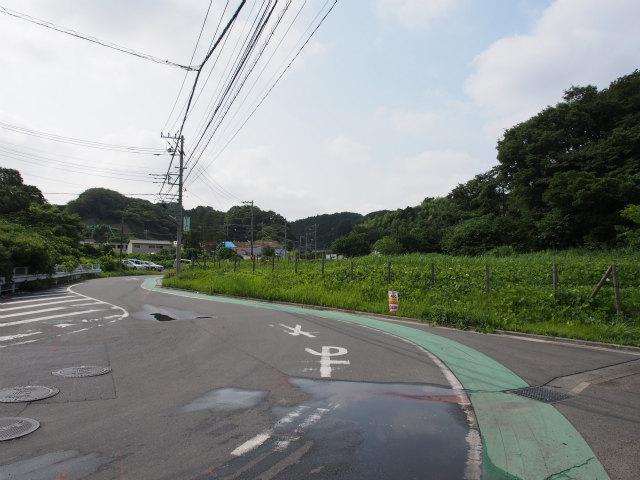 公田インター予定地付近。画面奥が釜利谷JCT方面。ぶっ壊すのは勿体無い緑地ですね。