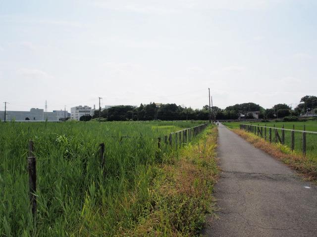 栄JCTインター予定地。