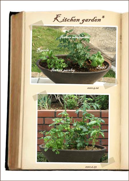 野菜寄せ植えweb用ok