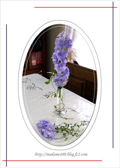 デルフィニウム花web用