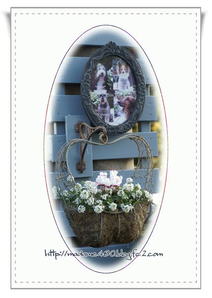 電柱カバーに花&写真web用